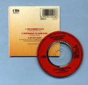 Braithwaite, Daryl - One Summer (3 CD Maxi)